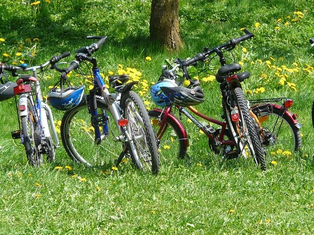 טיול אופניים לדוגמא